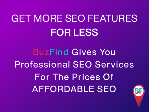 Affordable SEO   We make SEO services affordable   BuzFind
